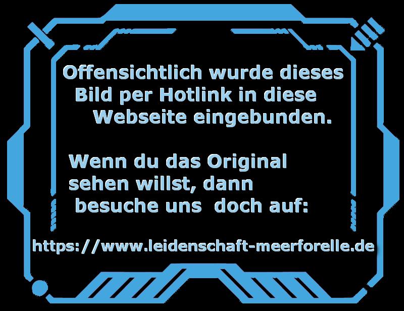Snapsdraget Rot//Schwarz 20g Gladsax Meerforellen Blinker Angeln Köder