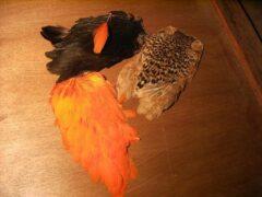Fliegenbinden - Henne indisch